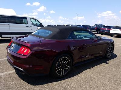 Used FORD MUSTANG 2018 MARGATE Ecoboost Premium