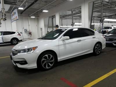 Used HONDA ACCORD-SEDAN 2017 MIAMI EX-L V6