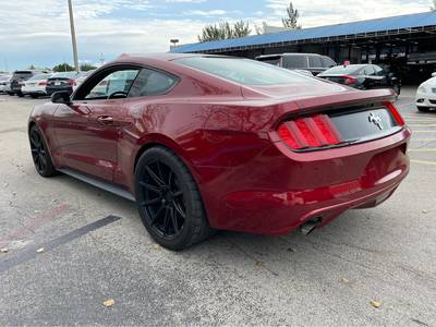 Used Ford Mustang 2017 MIAMI V6